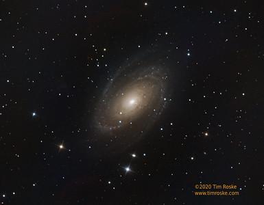 Bode's Galaxy, M81
