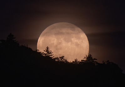 Strawberry Moonrise