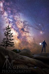 The Cosmic Traveler