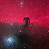 Horsehead Nebula by Ken Crawford