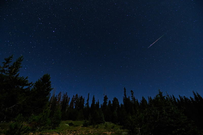 2009 Perseid Meteor Shower in the Colorado Rockies