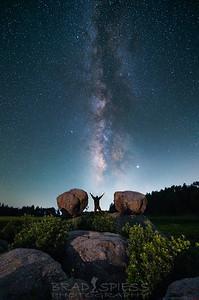 A Glorious Universe