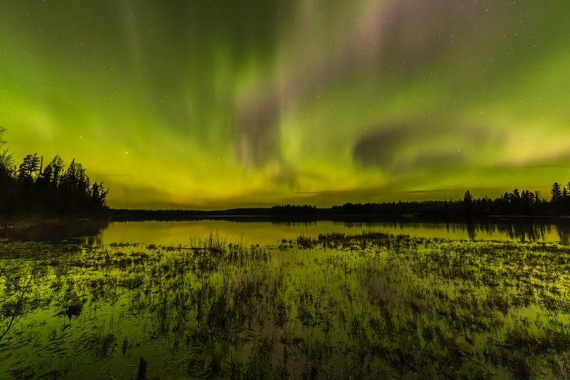 Vivian Lake Aurora