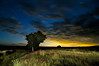 Moonset on the Central Shortgrass Prairie