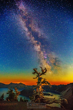The Milky Way and Aurora Borealis over Whitebark Pine, Wizard Island and Crater Lake under Moonlight, Crater Lake National Park