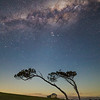 Mrs Hunt's Southern Sky