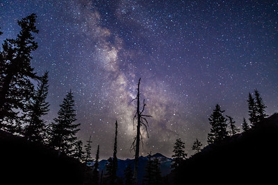 Rainy Pass Milky Way