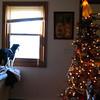 Christmas 2012 (07)