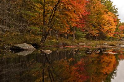 Autumn's Mirror