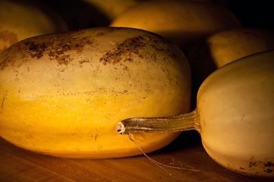 Spa-gourd-y
