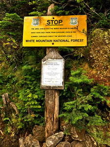 Tuesday, August 28, 2012  No Joke  A U.S. Forest Service sign provides a serious warning to hikers at treeline (Edmands Path) before emerging into the alpine zone. (image from last Friday)