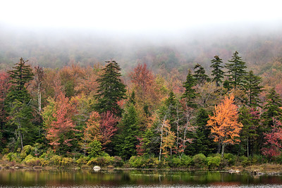 Sunday, October 2, 2011  Autumn Mist  Another overcast day today. This view is from Cold Spring Pond in Stoddard, New Hampshire.