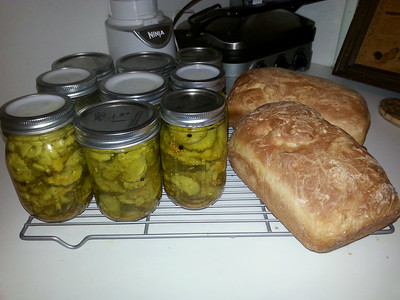 This year's pickles (half to the neighbors) and my first loaves of White Mtn Bread