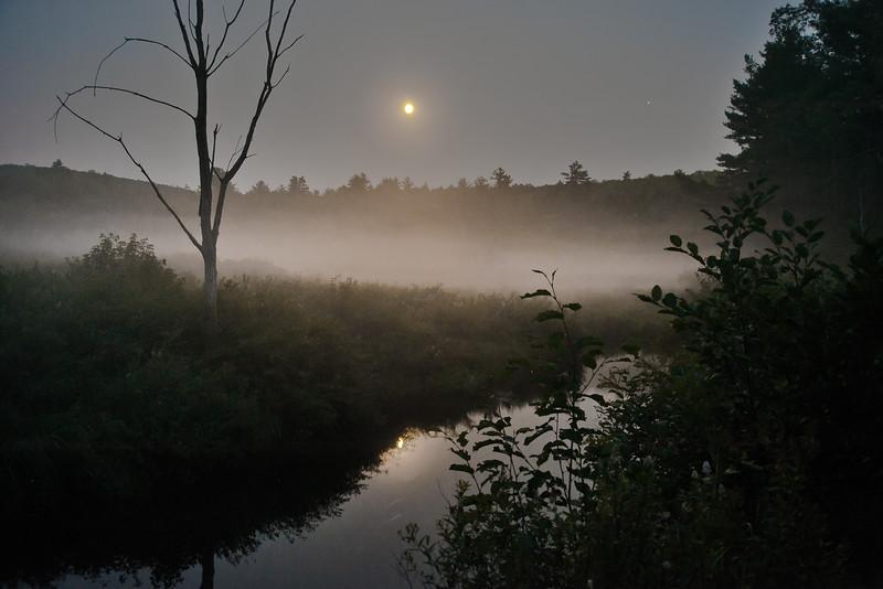 Abbott Brook Moonrise
