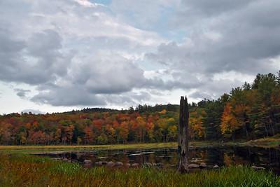 Fall Beaver Pond