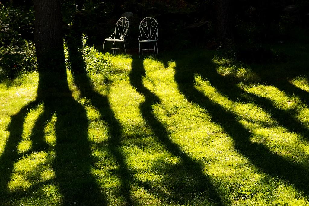 Sunday Morning Shadows