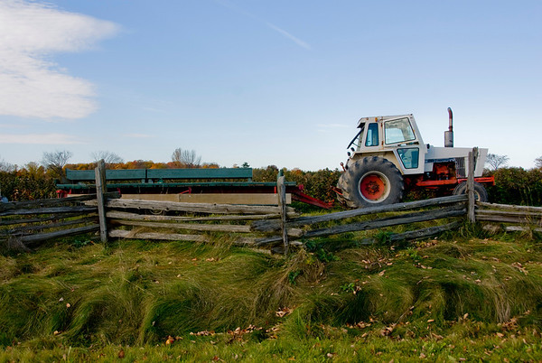 Applewood Farm. October 2010.