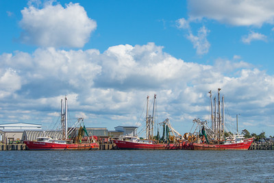Wanchese Fleet 6743