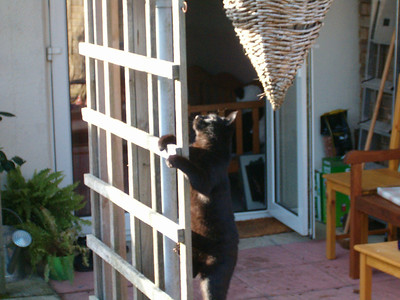 """""""Put it up there and I will catch it"""""""