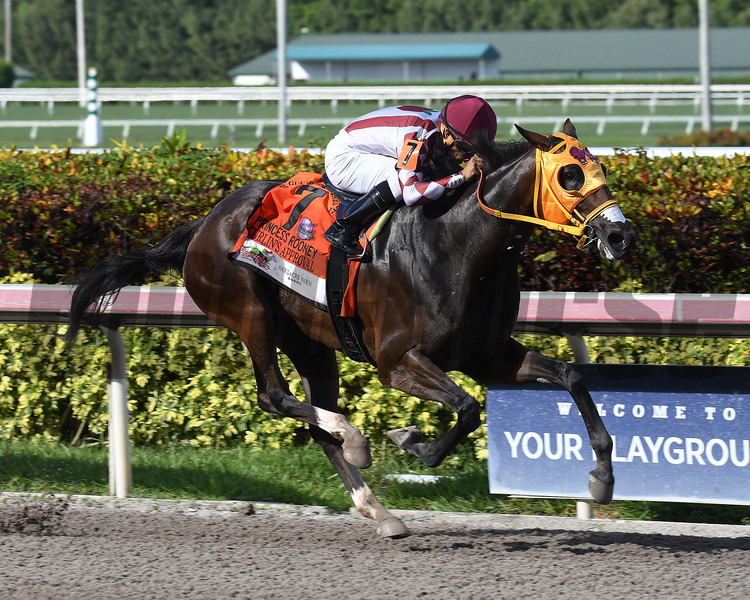Curlin's Approval wins the 2017 Princess Rooney<br /> Coglianese Photos