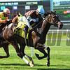 Lady Joan wins the 2017 New York Stallion Stakes<br /> Coglianese Photos/Robert Mauhar