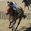 Long Haul Bay wins the 2017 Bay Shore.<br /> Coglianese Photos/Chelsea Durand