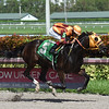 Curlin's Approval wins the 2017 Barely Even Handicap.<br /> Coglianese Photos/Leslie Martin
