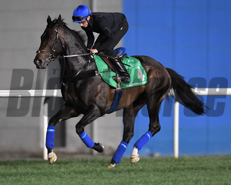Dubai World Cup -Morning works 3/24/17, photo by Mathea Kelley/Dubai Racing Club<br /> Jack Hobbs, Dubai Sheema Classic