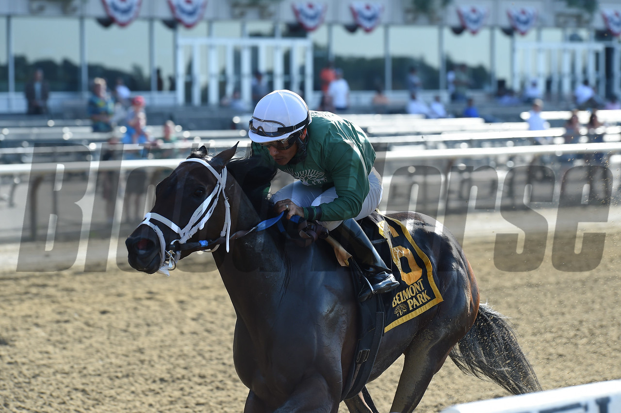 Chalon wins the Jersey Girl Stakes $150,000 at Belmont Park on June 11 2017