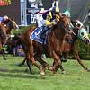 Sadler's Joy wins the 2017 Sword Dancer Stakes<br /> Coglianese Photos/Joe Labozzetta