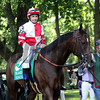 Songbird Mike Smith Delaware Handicap Paddock Chad B. Harmon