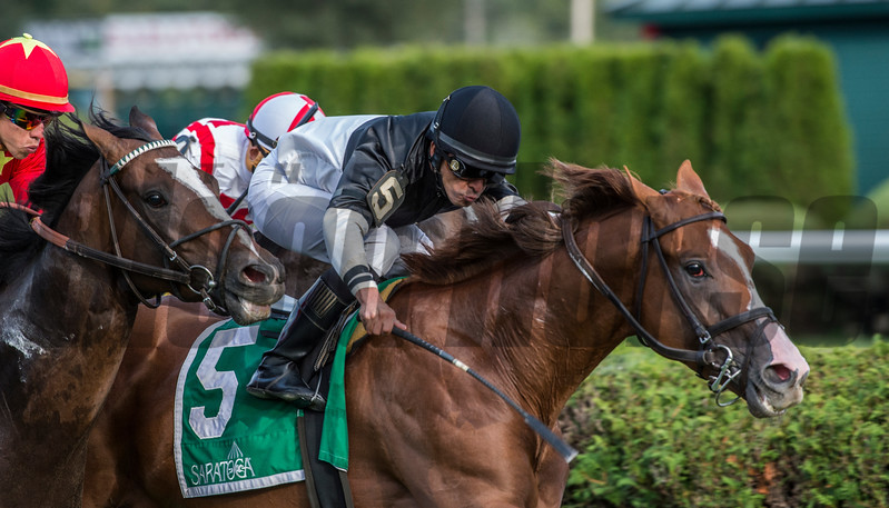 Voodoo Song with jockey Jose Lezcano aboard win the 110th running of The Saranac GIII Saturday Sept. 1, 2017 at the Saratoga Race Course in Saratoga Springs, N.Y. (Skip Dickstein/