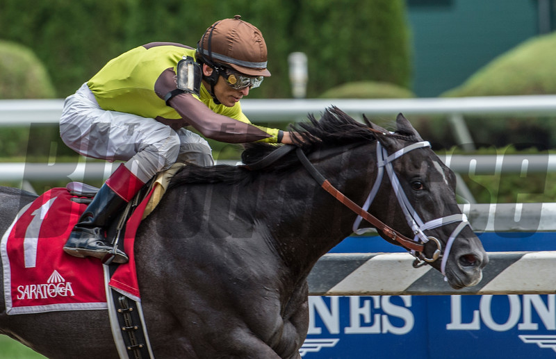 Jockey John Velazquez guides Pure Silver to the win in the 101st running of The Adirondack at the Saratoga Race  Course Aug. 12, 2017  in Saratoga Springs, N.Y.  (Skip Dickstein