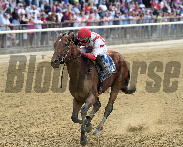 Practical Joke wins the 2017 Dwyer.<br /> Coglianese Photos/Chelsea Durand