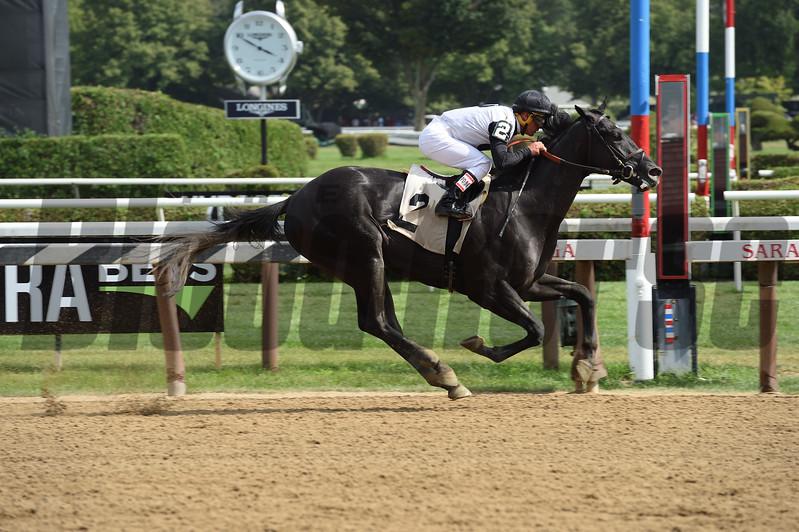 Barely Impazible - Maiden win, Saratoga, August 7, 2017<br /> Coglianese Photos