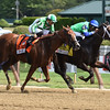 By the Moon wins the 2017 Ballerina<br /> Coglianese Photos