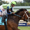 Flatlined wins the 2017 Ft. Lauderdale Stakes<br /> Coglianese Photos/Lauren King