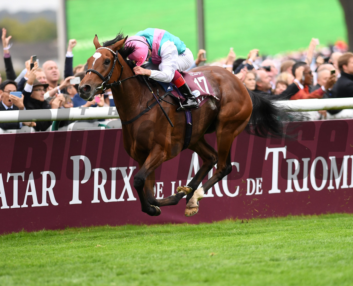 Enable and Frankie Dettori win the  Qatar Prix De L''Arc De Triomphe,  Chantilly Race Course, Chantilly France, photo by Mathea Kelley