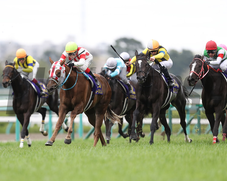 Reine Minoru wins the Oka Sho (G1) at Hanshin Racecourse on April 9 2017