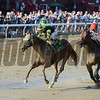 Celtic Chaos wins the 2017 John Morrissey Stakes<br /> Coglianese Photos/Chelsea Durand