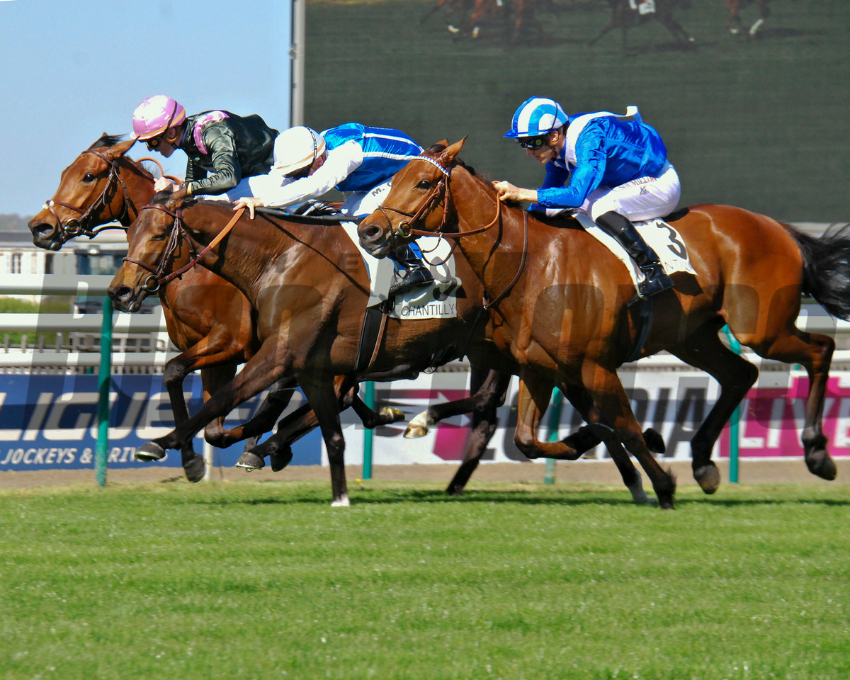 Gold Luck wins the Prix Vanteaux (G3) at Chantilly in France on April 9 2017