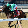 Wonder Gal wins the 2017 Ladies Handicap<br /> Coglianese Photos/Chelsea Durand