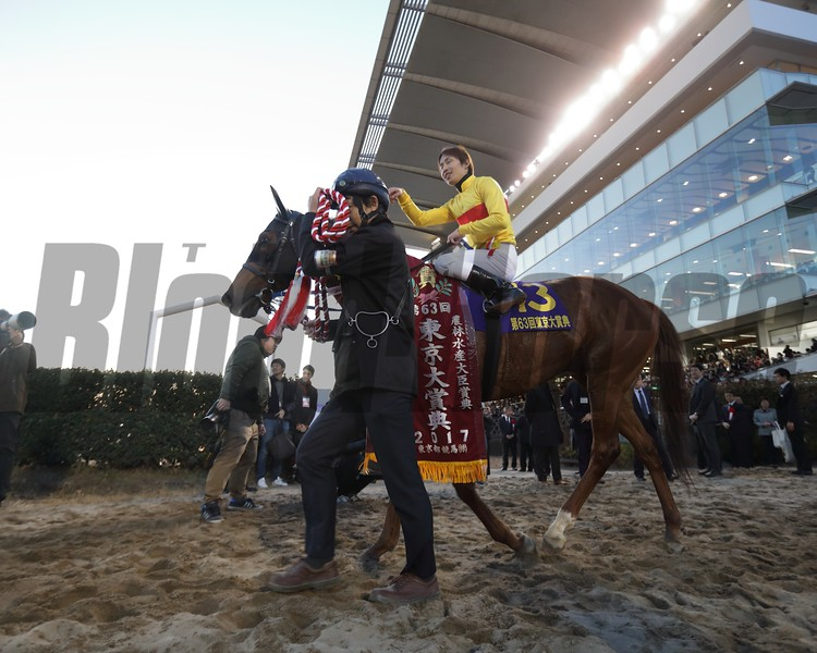 Copano Rickey closed out his career December 29, 2017 with a victory in the Tokyo Diashoten (G1) at Ohi Racecourse with jockey Hironobu Tanabe aboard.