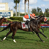 Goldwood - AOC, Gulfstream Park, December 26, 2017<br /> Coglianese Photos/Leslie Martin