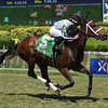 Adorable Miss wins the 2017 Honey Ryder Stakes                                       <br /> Coglianese Photos