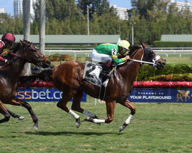 Pretty Perfection wins the 2017 Captiva Island Stakes<br /> Coglianese Photos/Leslie Martin