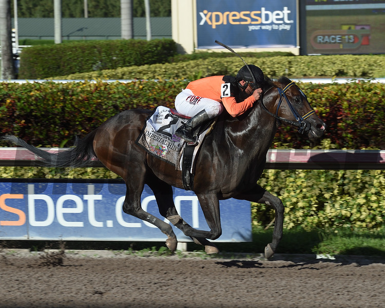 Imperial Hint wins the 2017 Smile Sprint<br /> Coglianese Photos/Leslie Martin
