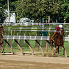 Gun Runner with jockey Florent Geroux runs away from the field as he wins the 90th running of The Whitney at the Saratoga Race Course  Saturday Aug. 5, 2017 in Saratoga Springs, N.Y.  (Skip Dickstein