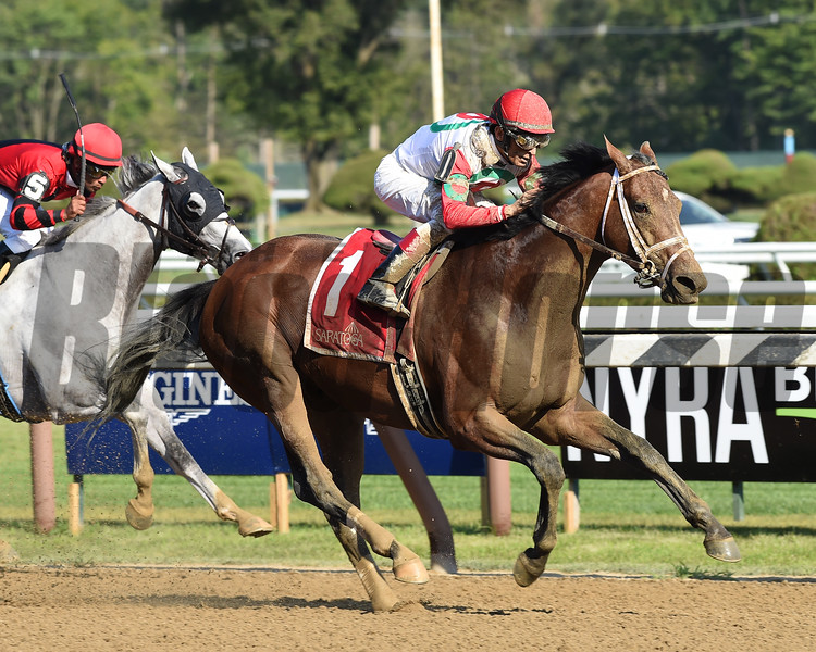 Hard Study wins the 2017 Birdstone Stakes<br /> Coglianese Photos/Susie Raisher