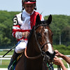 Songbird wins the 2017 Ogden Phipps Stakes<br /> Coglianese Photos/Susie Raisher
